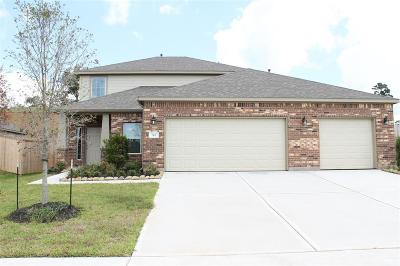 Conroe Single Family Home For Sale: 311 Nettle Tree Court