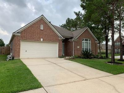 Tomball Single Family Home For Sale: 11731 Canyon Mist Lane
