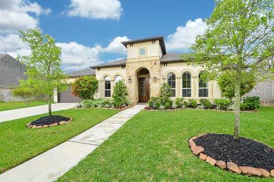 Pearland Single Family Home For Sale: 3216 Tamara Creek Lane