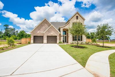 Tomball Single Family Home For Sale: 25411 Hollowgate Park Lane