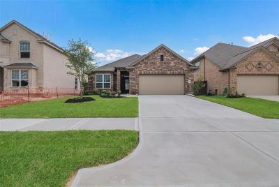 Spring TX Single Family Home For Sale: $262,828