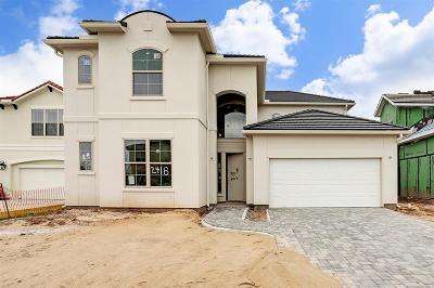 Houston Single Family Home For Sale: 2418 Camden Creek Lane