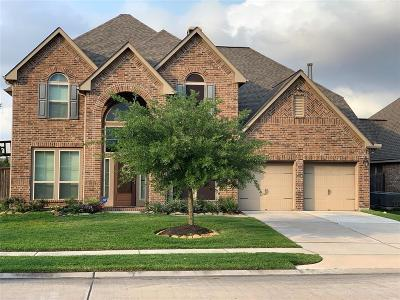 Pearland Single Family Home For Sale: 13709 Sunset Harbor Drive