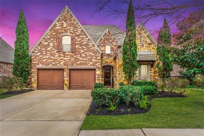 Katy Single Family Home For Sale: 5419 Jackson Park Lane
