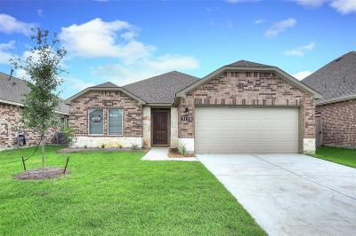 Alvin Single Family Home For Sale: 5158 Echo Falls Drive