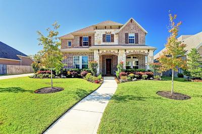 Friendswood Single Family Home For Sale: 2408 Lake Shadows Lane