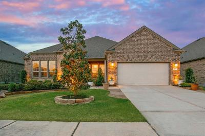 Single Family Home For Sale: 354 Kerry Bog Lane