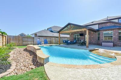 Fulshear Single Family Home For Sale: 6223 Holly Oaks Court