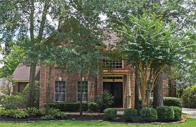 The Woodlands Single Family Home For Sale: 119 Meadowspring Circle