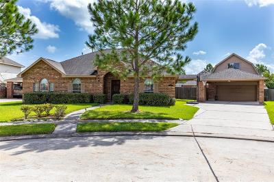Pearland Single Family Home For Sale: 3405 Kleberg Court