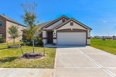 Rosenberg Single Family Home For Sale: 6207 Kolle Drive