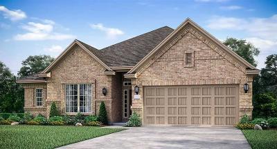 Rosenberg Single Family Home For Sale: 2407 Madera Landing Lane
