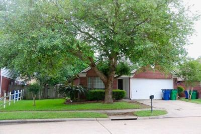 Angleton Single Family Home For Sale: 705 Spanish Trace