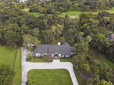 Friendswood Single Family Home For Sale: 707 Cowards Creek Drive