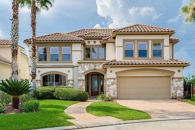 Houston Single Family Home For Sale: 14206 Flower Creek Lane