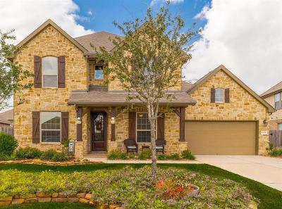 Tomball Single Family Home For Sale: 13306 Cameron Reach Drive