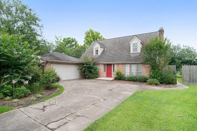Friendswood Single Family Home For Sale: 209 Palm Aire Drive