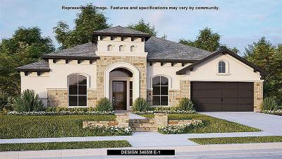 Friendswood Single Family Home For Sale: 825 Galloway Mist Lane