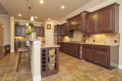 Friendswood Single Family Home For Sale: 2329 Brighton Park Lane