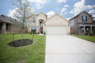 Single Family Home For Sale: 2627 Bright Rock Lane