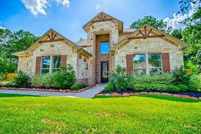 Tomball Single Family Home For Sale: 30715 Raleigh Creek Drive