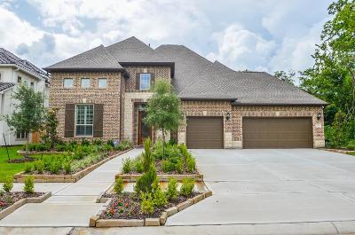 Missouri City Single Family Home For Sale: 9402 San Marco Drive