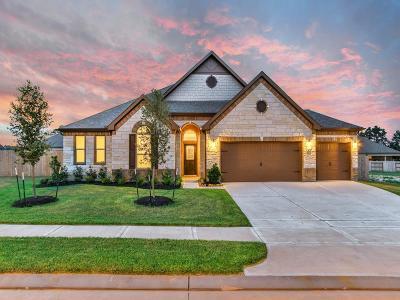 Single Family Home For Sale: 8703 Ute Creek