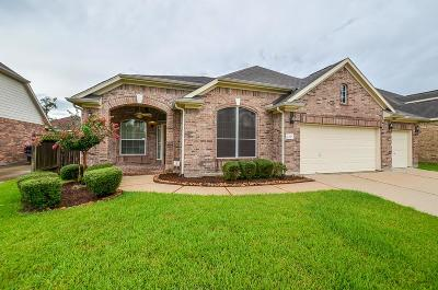 League City Single Family Home For Sale: 4450 Chestnut Circle