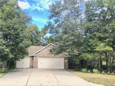 The Woodlands Single Family Home For Sale: 35 Canoe Birch Place