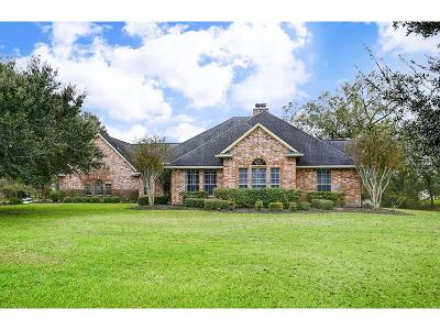 Richmond Single Family Home For Sale: 1611 Brazoswood Place