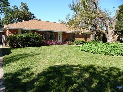 Houston Single Family Home For Sale: 7123 Heron Drive
