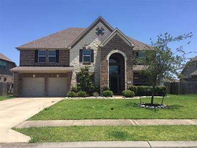 Baytown Single Family Home For Sale: 9618 Wincrest Drive