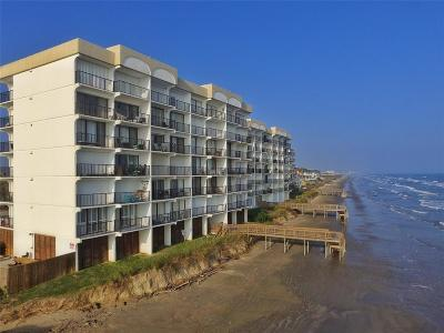 Galveston Mid/High-Rise For Sale: 11949 Termini San Luis Pass Road #102