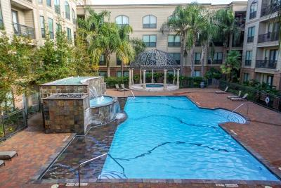 Sugar Land Condo/Townhouse For Sale: 2299 Lone Star Drive #101