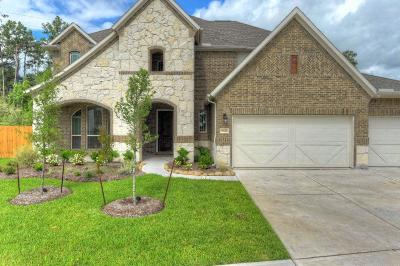 Tomball Single Family Home For Sale: 9618 Three Stone Lane