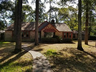 Houston Single Family Home For Sale: 2507 Encreek Road