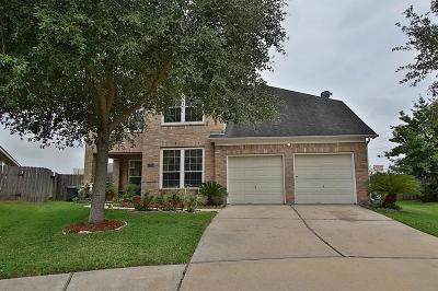 Houston Single Family Home For Sale: 17203 Fernchase Court