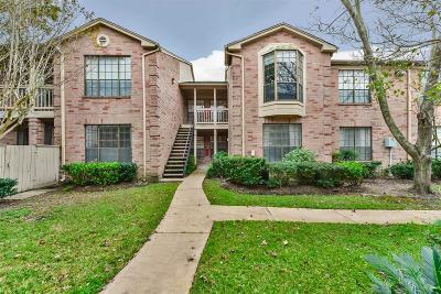 Houston Condo/Townhouse For Sale: 2255 Braeswood Park Drive #147