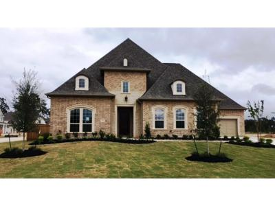 Conroe Single Family Home For Sale: 2203 Crossvine