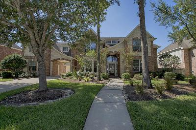 Friendswood Single Family Home For Sale: 3323 Duke Lane