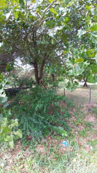 Mabank Residential Lots & Land For Sale: 115 Sundown