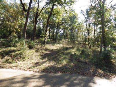 Mabank Residential Lots & Land For Sale: 005/17/Cedar Oaks Drive