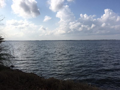Malakoff Residential Lots & Land For Sale: 149 Shoreline Drive