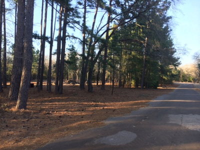 Murchison Residential Lots & Land For Sale: Lot 43 Chapparal