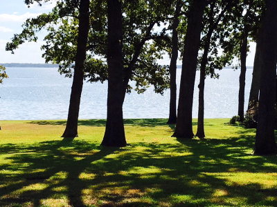 Mabank Residential Lots & Land For Sale: 152 Lake Drive