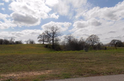 Athens Residential Lots & Land For Sale: Tbd High Point