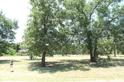 Mabank Residential Lots & Land For Sale: 114 Adison Lane