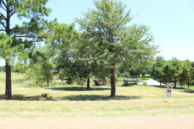 Mabank Residential Lots & Land For Sale: 107 Adison Lane