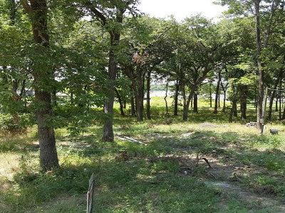 Mabank Residential Lots & Land For Sale: 32 Oak Landing Circle