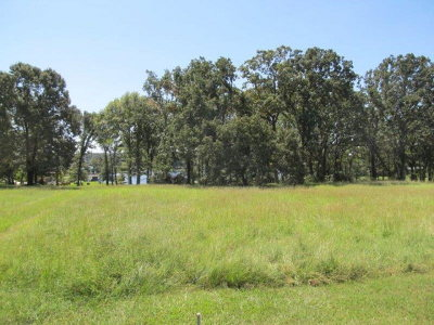 Athens Residential Lots & Land For Sale: 16 Lakefront Shores